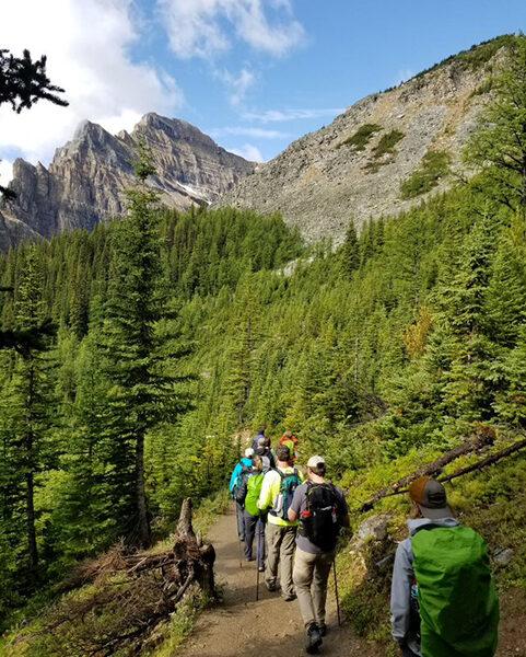 forest-path-481x600.jpg