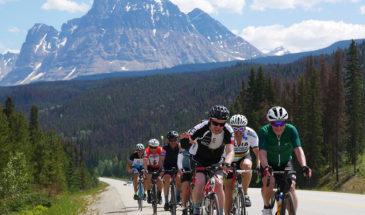cyclists-1-365x215.jpg